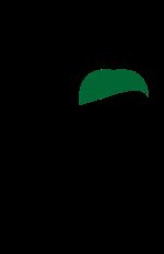 logo-color-PNG